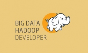 Big Data Hadoop Developer Certification Training Course