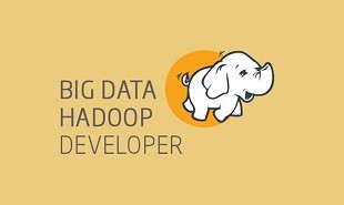 Big Data Hadoop Developer Certification Training Course